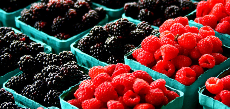 The Benefits of Berries to the Brain